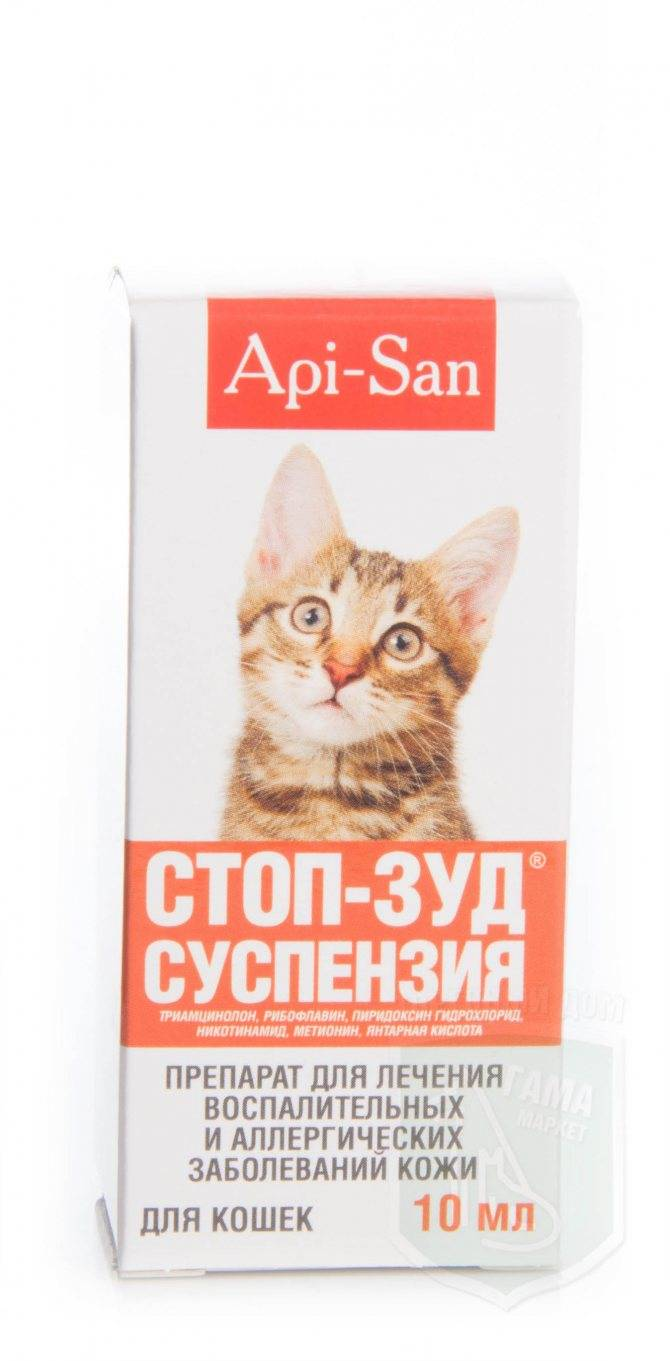 Стоп зуд для кошек (суспензия, спрей): инструкция по применению, показания и противопоказания, аналоги, отзывы