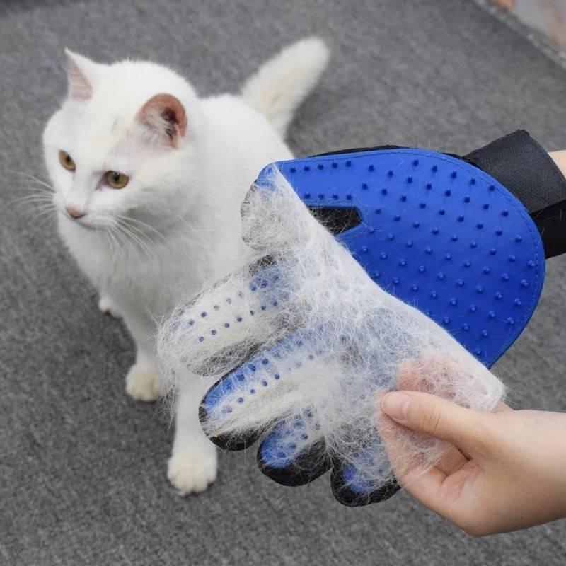 Колтуны у кошки: как предотвратить спутывание шерсти