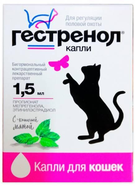 Гестренол для кошек: состав, показания, советы по применению