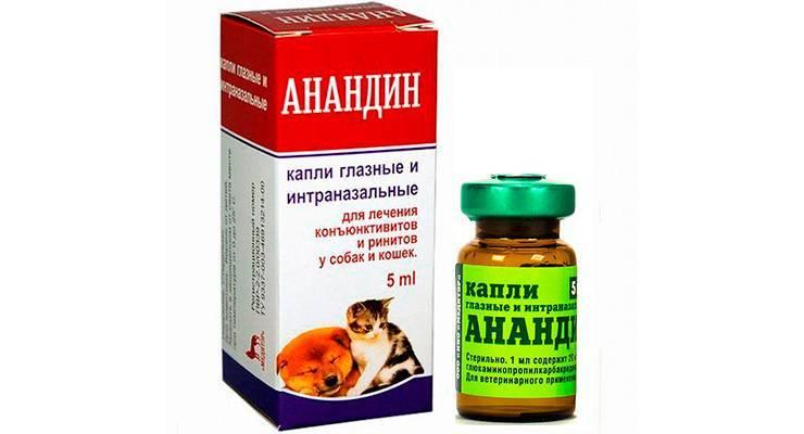 Анандин – глазные капли или интраназальные для собак