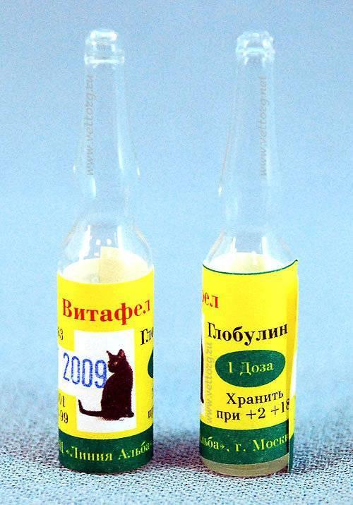 Витафел для кошек: сыворотка, глобулин