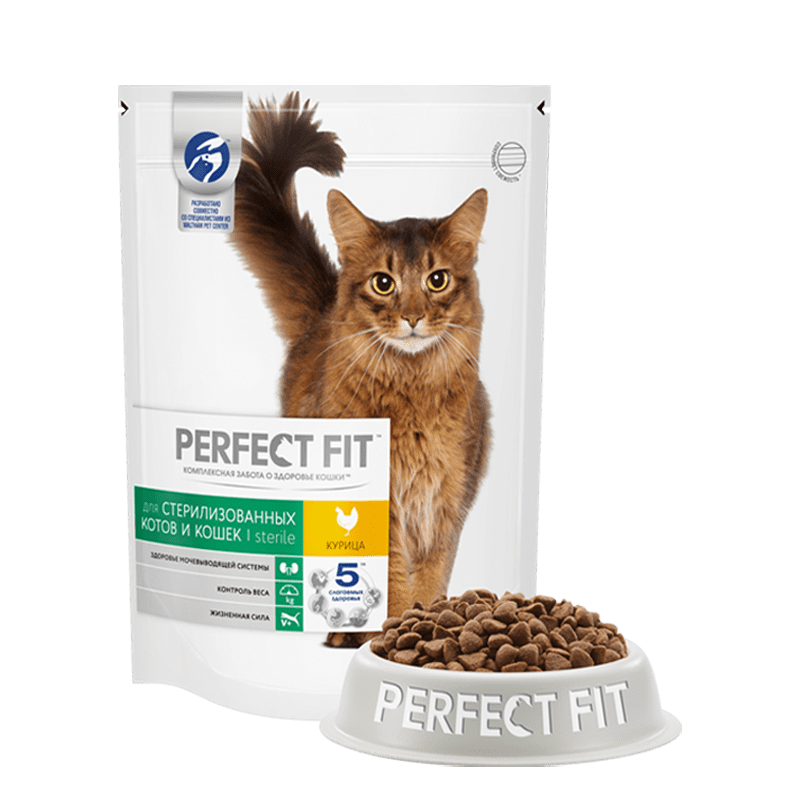 Чем и как кормить кастрированного кота