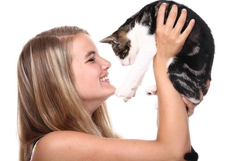 Коты полезны для здоровья! 10 причин, обоснованных учеными