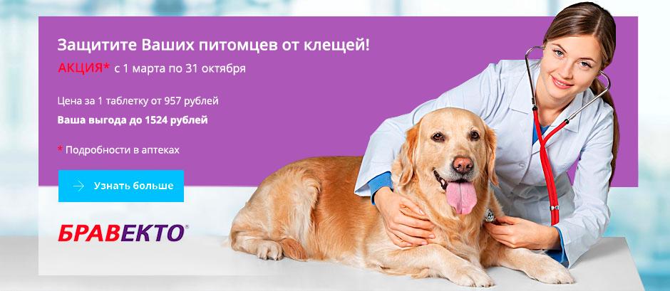 Ветеринарная гомеопатия для собак и кошек в санкт-петербурге — zooprice.ru
