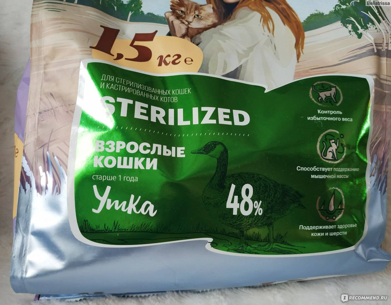 Как правильно кормить кошек сухими кормами: дозировка для кота