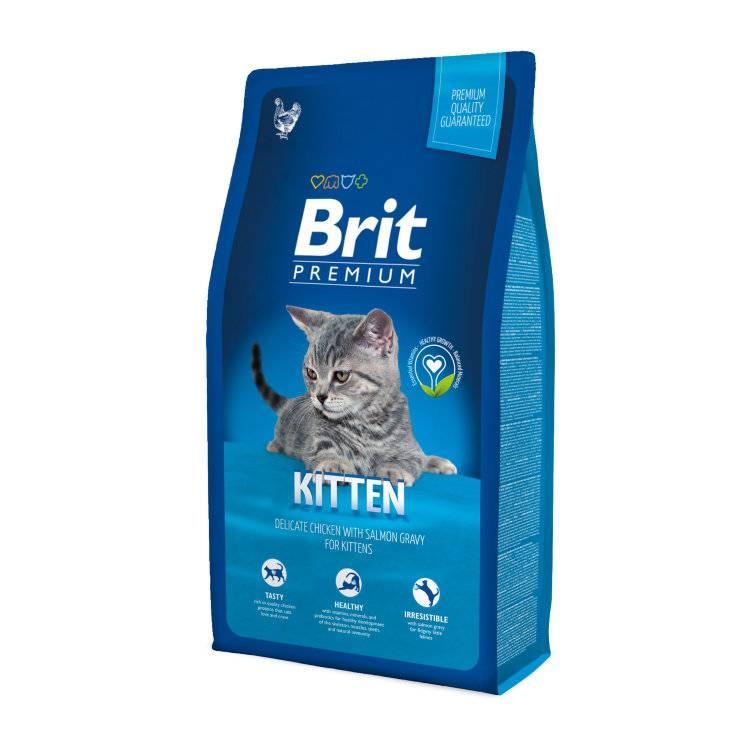 """""""brit"""" – корм для кошек: premium, care, сухой и влажный, для котят и взрослых котов"""