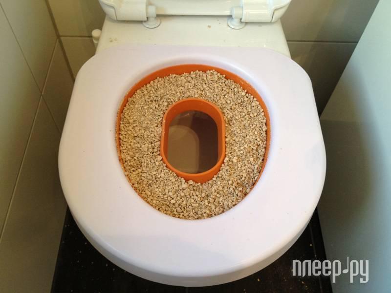Как приучить кошку к нитазу: специальный лоток для приучения перемещаем в туалет
