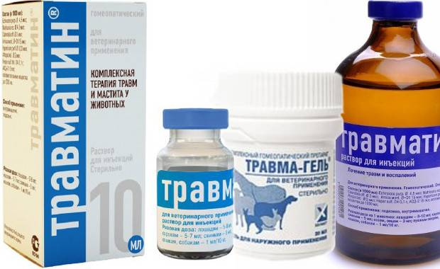 Травматин для собак: состав, формы выпуска, применение, дозировка, противопоказания, аналоги