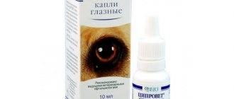 Глазные капли ципролет для кошек. можно ли капать ципролет кошке?