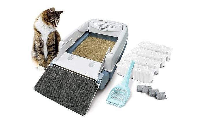 Туалеты для кошек закрытые: выбираем комфорт для животного и чистоту для дома - kot-pes