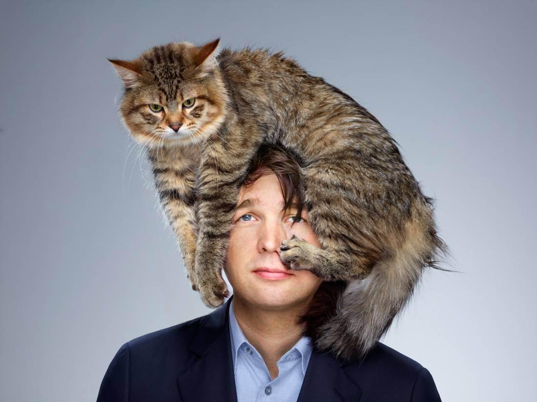 Люди которые любят кошек. психология кошек