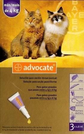 Адвокат для кошек: капли инструкция и стоимость
