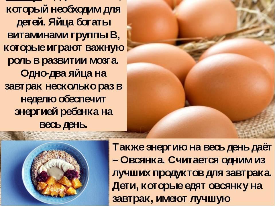 Можно ли давать кошке сырое яйцо можно ли давать кошке сырое яйцо