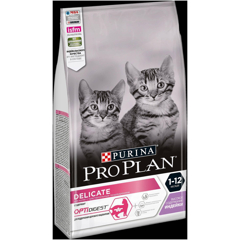 Корм для кошек с чувствительным пищеварением и проблемами ЖКТ: какой предпочесть?