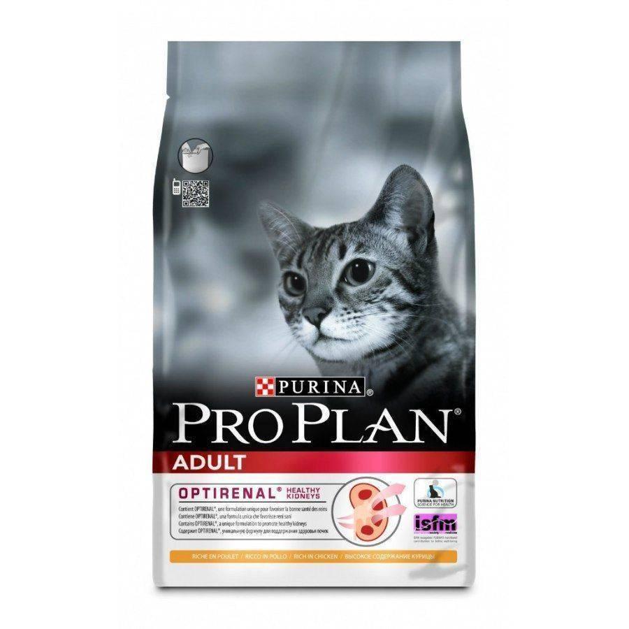 """""""проплан"""" или """"роял канин"""" – какой корм лучше для кошек и собак"""