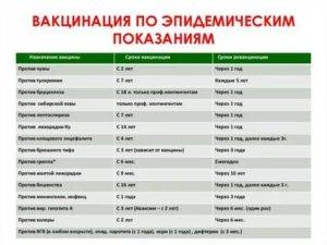 Прививки животным: наименование прививок, список необходимых, состав вакцины, сроки вакцинации, рекомендации и советы ветеринаров