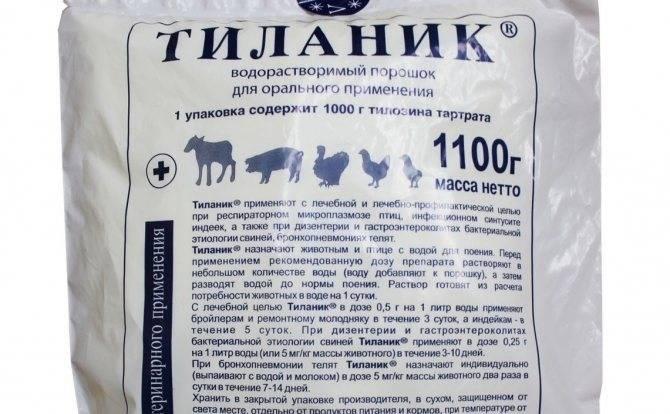 Тилозин 50, 200 для кошек: инструкция по применению в ветеринарии, показания и противопоказания, аналоги, отзывы