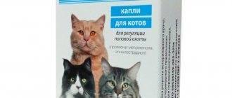 Инструкция по применению препарата кетофен для кошек