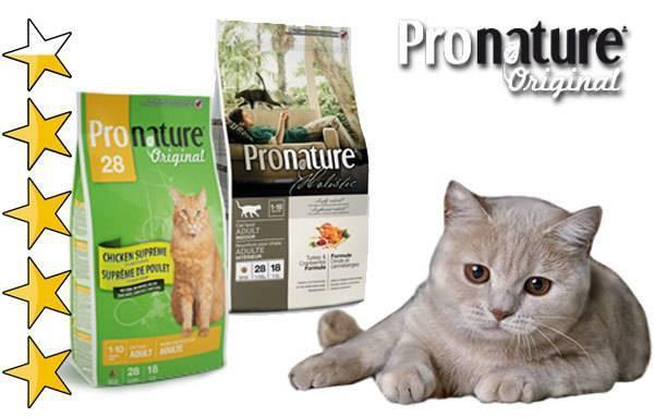 Что такое корма holistic класса для котов: обзор самых лучших вариантов