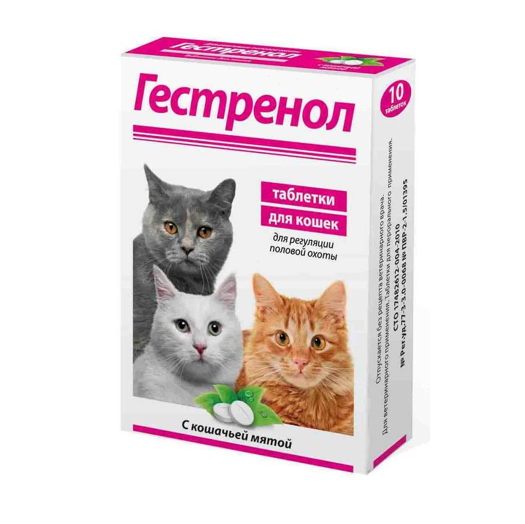 Гестренол для кошек: случаи назначения и рекомендации по применению