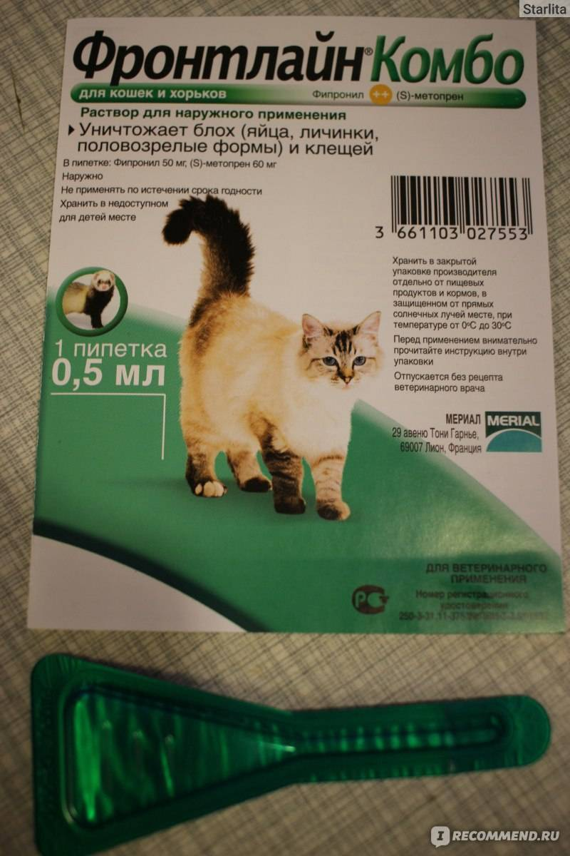 Лучшие капли на холку от блох для кошек: как действуют и как использовать средства для вашего питомца