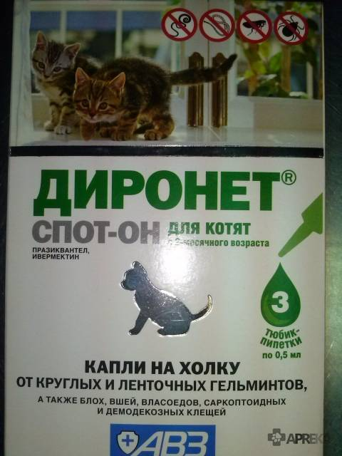 Диронет спот-он (капли) для кошек и собак   отзывы о применении препаратов для животных от ветеринаров и заводчиков