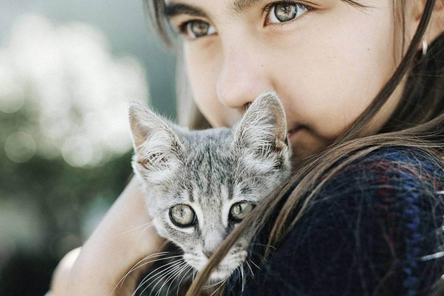 Сайт кошки масяни: фото котов - обои фэнтези - картинки котят - анекдоты о котах - смешные афоризмы - рисунки кошек - книги и стихи о кошачьих