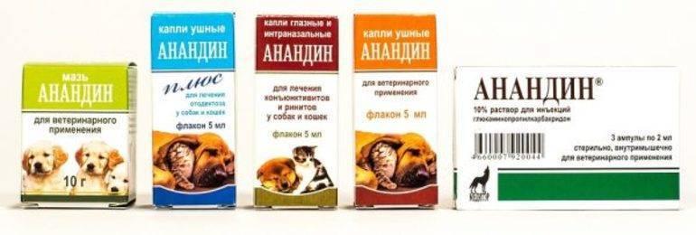 Анандин для кошек: состав, инструкция по применению, показания и противопоказания