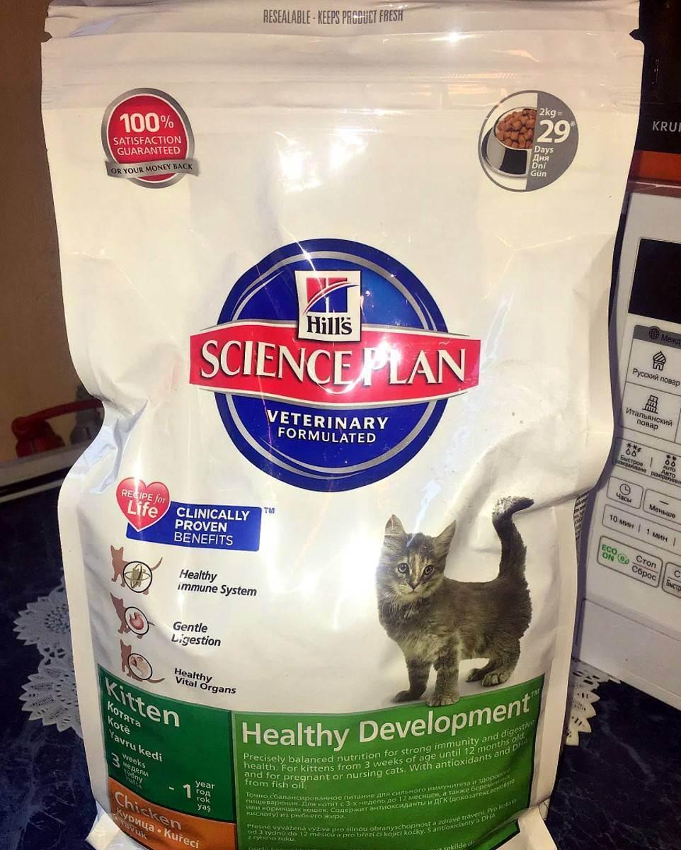 Корм хиллс для кошек: обзор состава, рекомендации по выбору и советы по применению в рационе питания (130 фото)