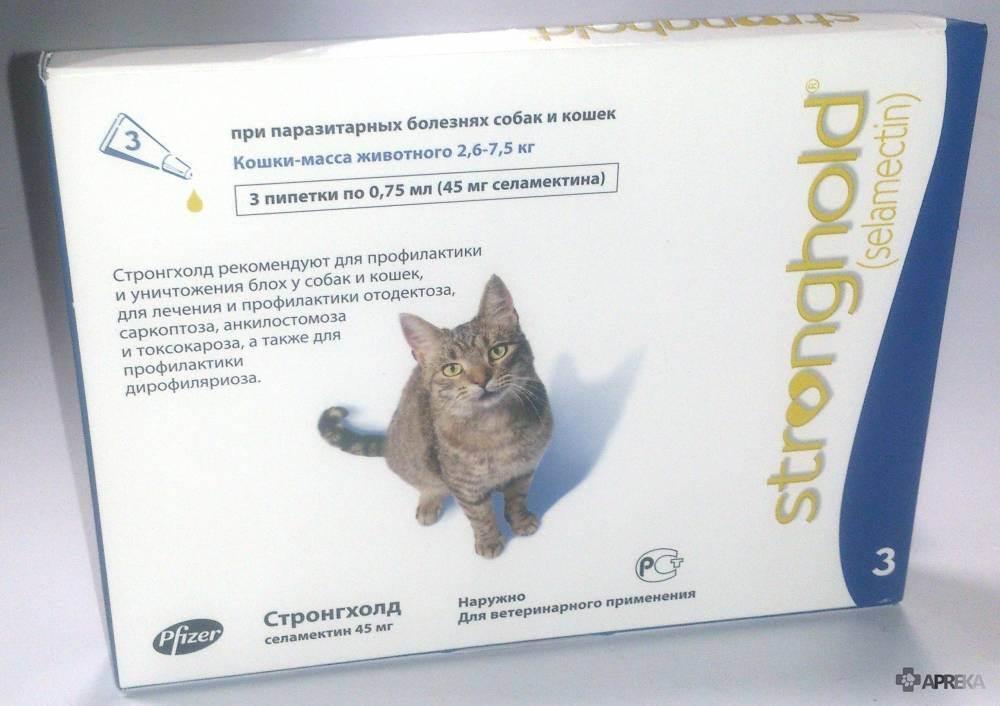 Стронгхолд для кошек: эффективное избавление питомца от паразитов