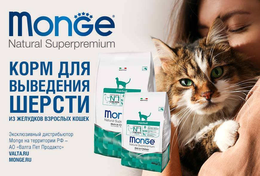 Чем вывести шерсть у кота в желудке народные средства