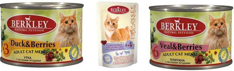 Almo nature («алмо») для кошек: отзывы о корме ветеринаров и владельцев животных, его состав, серии, виды и цена