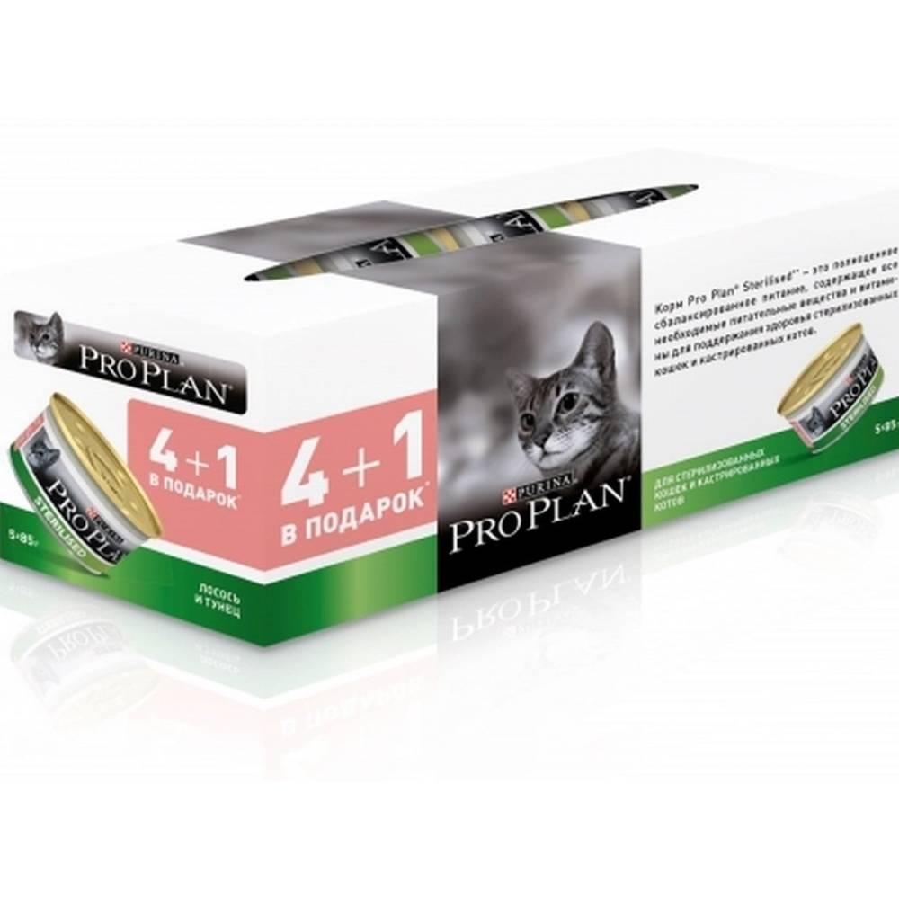 Лучший корм для стерилизованных кошек: отзывы ветеринаров о разных видах