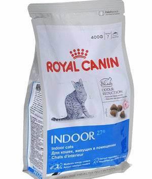 Можно ли кормить кошку сухим кормом и натуральной пищей одновременно?