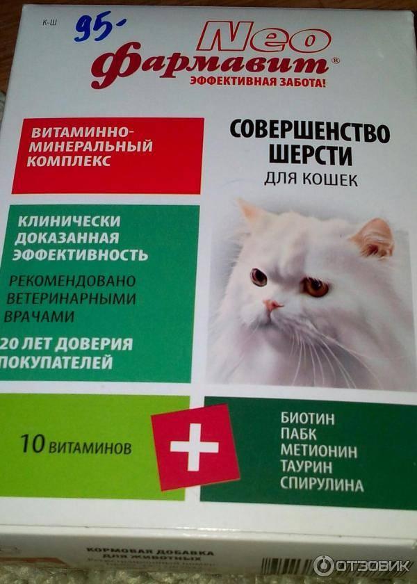 Витамины для кошек от выпадения шерсти | zdavnews.ru