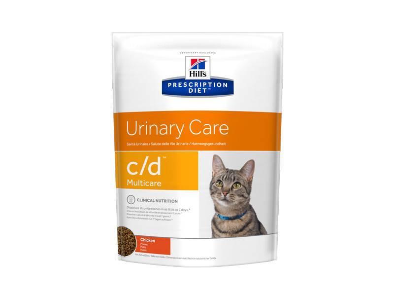 Как подобрать специальный корм для кошек при запорах?