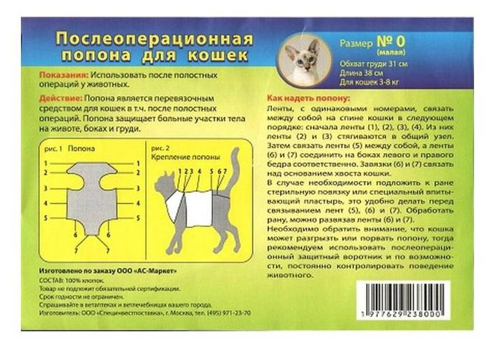 Как правильно завязывать кошке попону после операции?