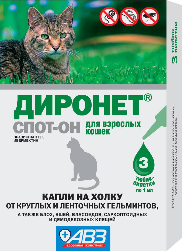 Капли на холку от глистов для кошек: диронет, барс, профендер или стронгхолд