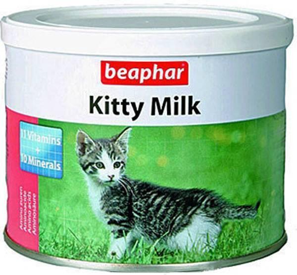 Примеры заменителей молока для кошек: состав и какая жирность в процентах
