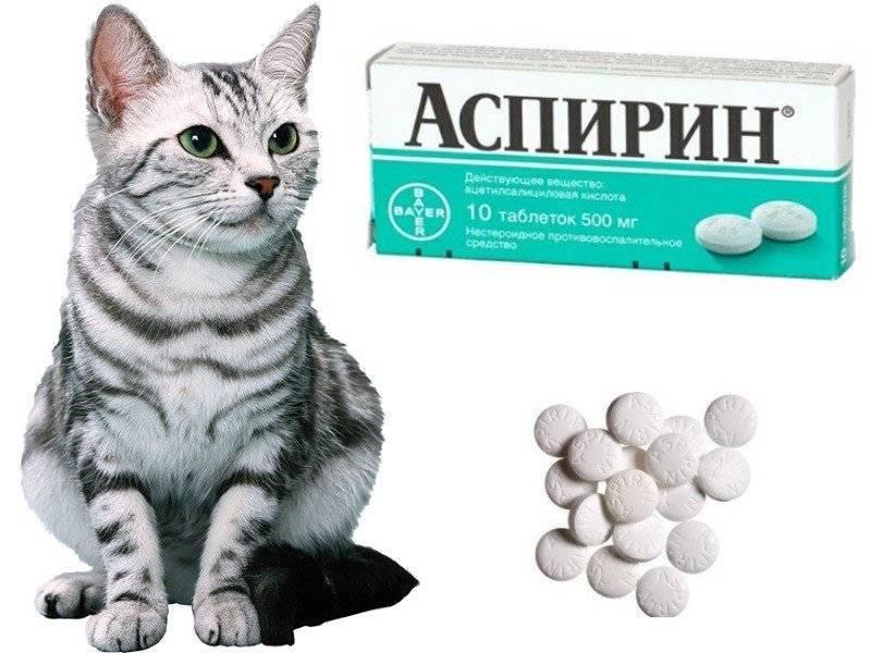 Применение ветеринарного препарата ветом 1.1 | справочник садовской