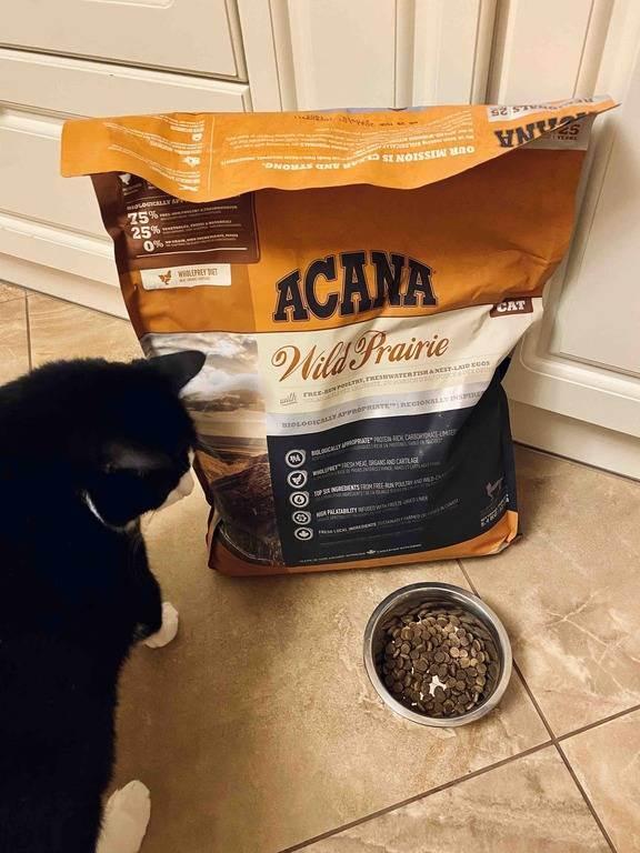 Корм для собак acana regionals grasslands dog grain-free