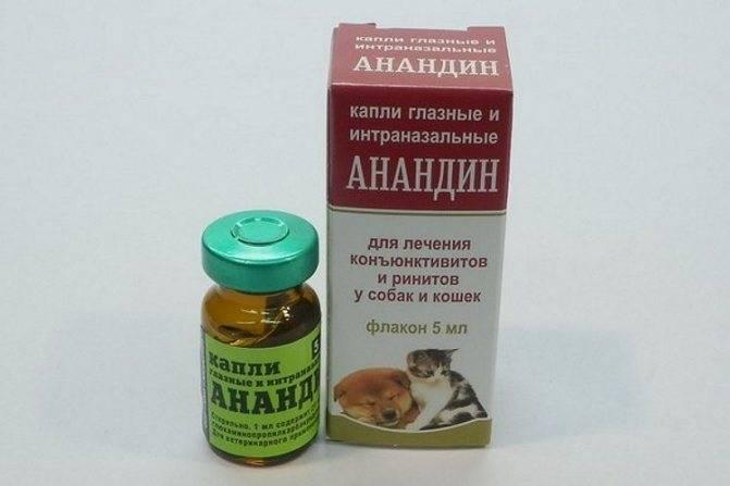 Дозировка максидин для инъекций кошке. как применять препарат максидин для лечения простудных заболеваний кошек