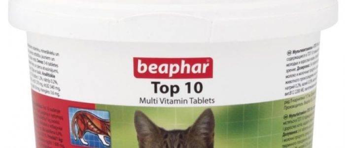 Витамины и подкормки для кошек beaphar
