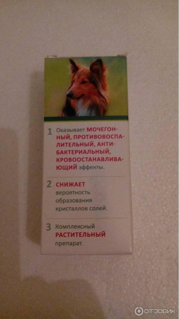 Уролекс для кошек: инструкция и показания по применению   отзывы, цена