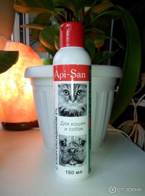 Хлоргексидин для кошек