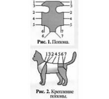 Как правильно завязывать послеоперационную попону на кошке после стерилизации, можно ли сшить ее своими руками?