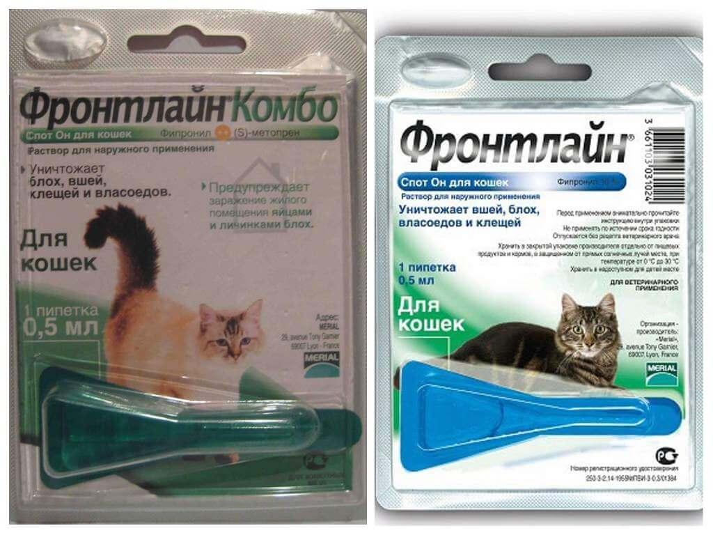 Капли и спрей фронтлайн для собак и кошек: применение от блох и клещей, инструкции и противопоказания