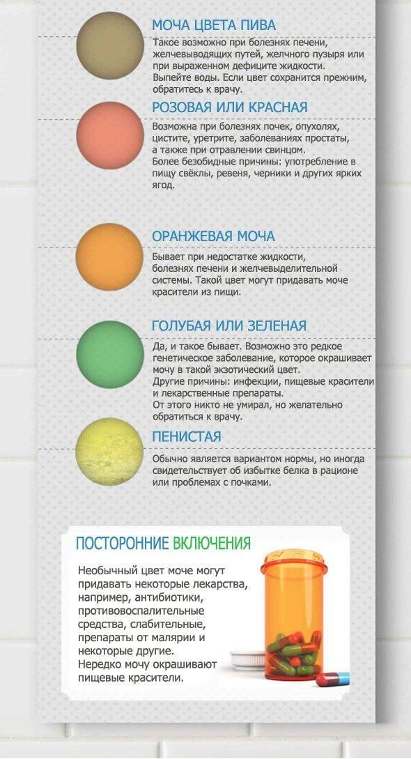 Как по цвету мочи определить болезнь | университетская клиника