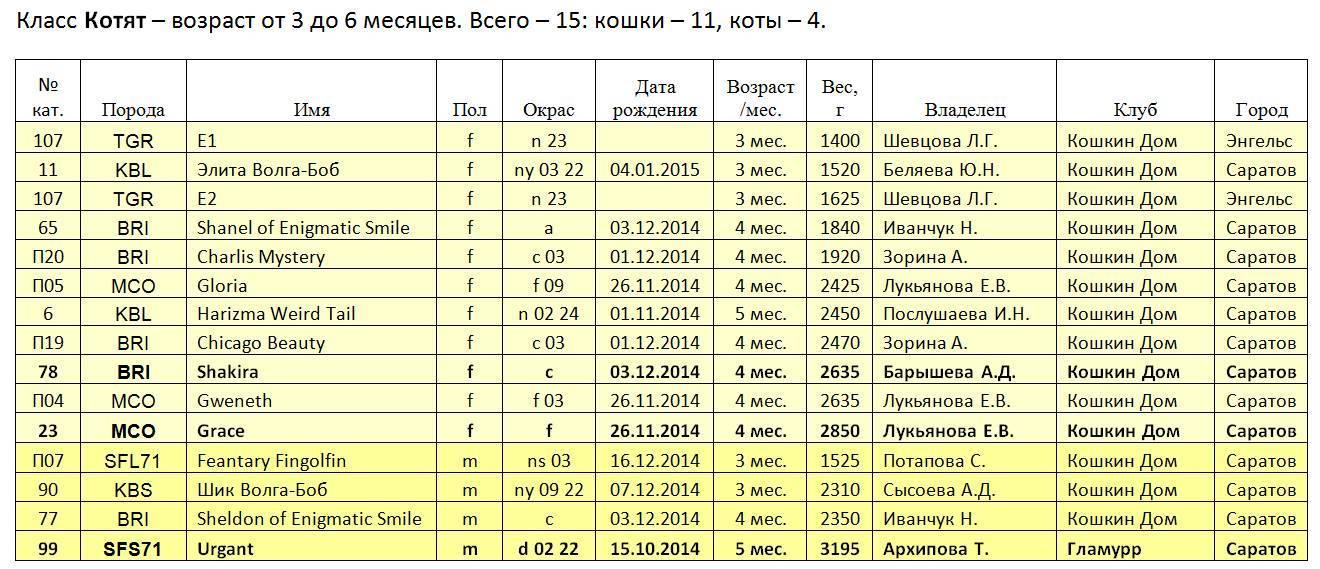 Таблица веса котят по месяцам: от рождения до года