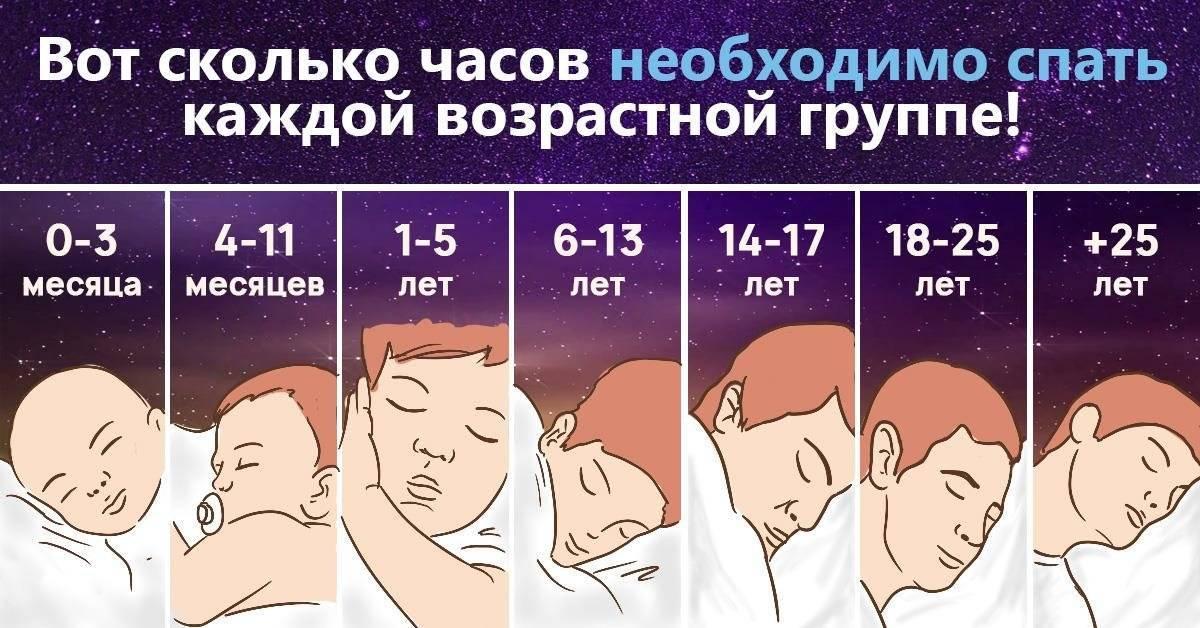 Сколько должны спать кошки в сутки?